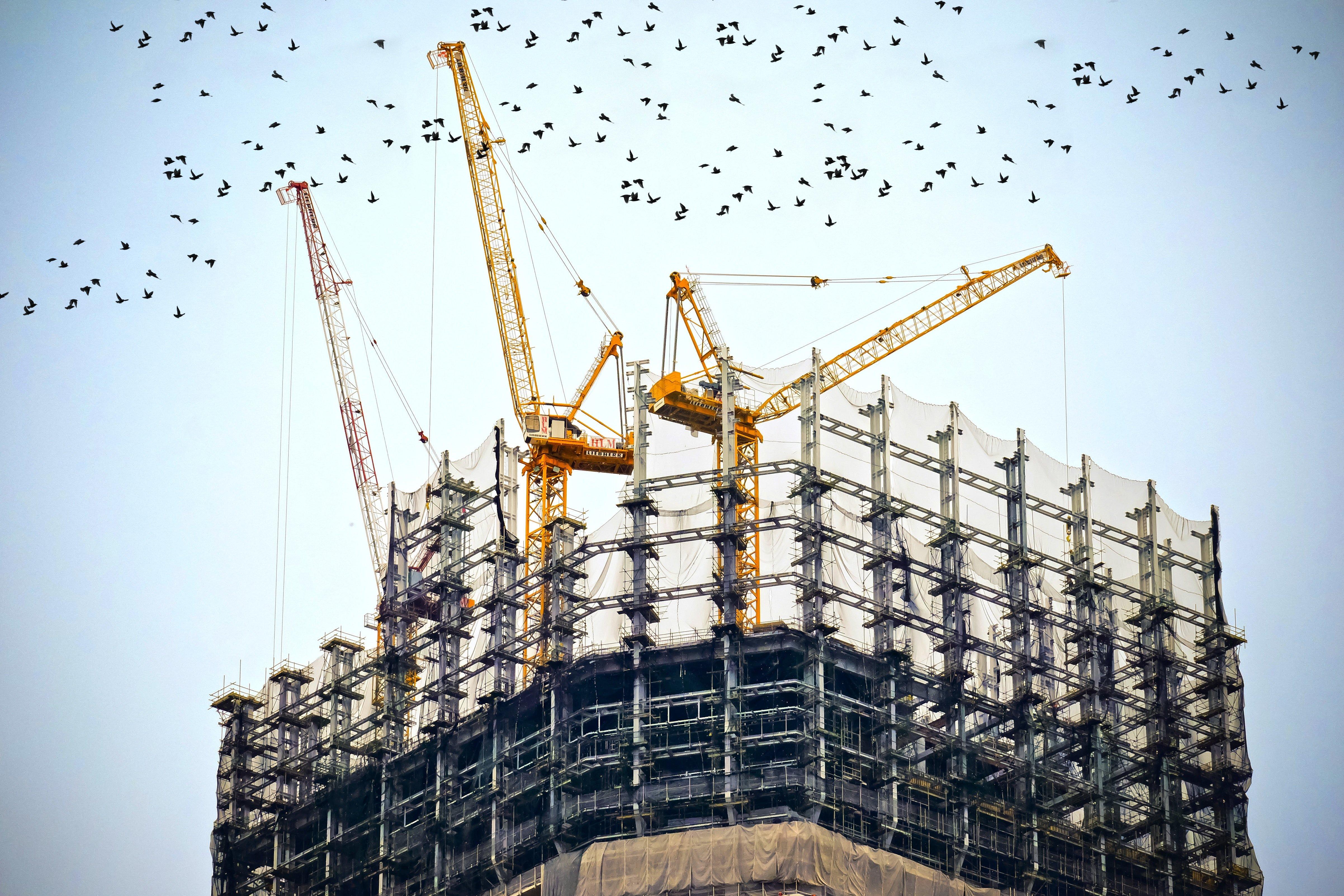building-skeleton-with-construction-crane.jpg