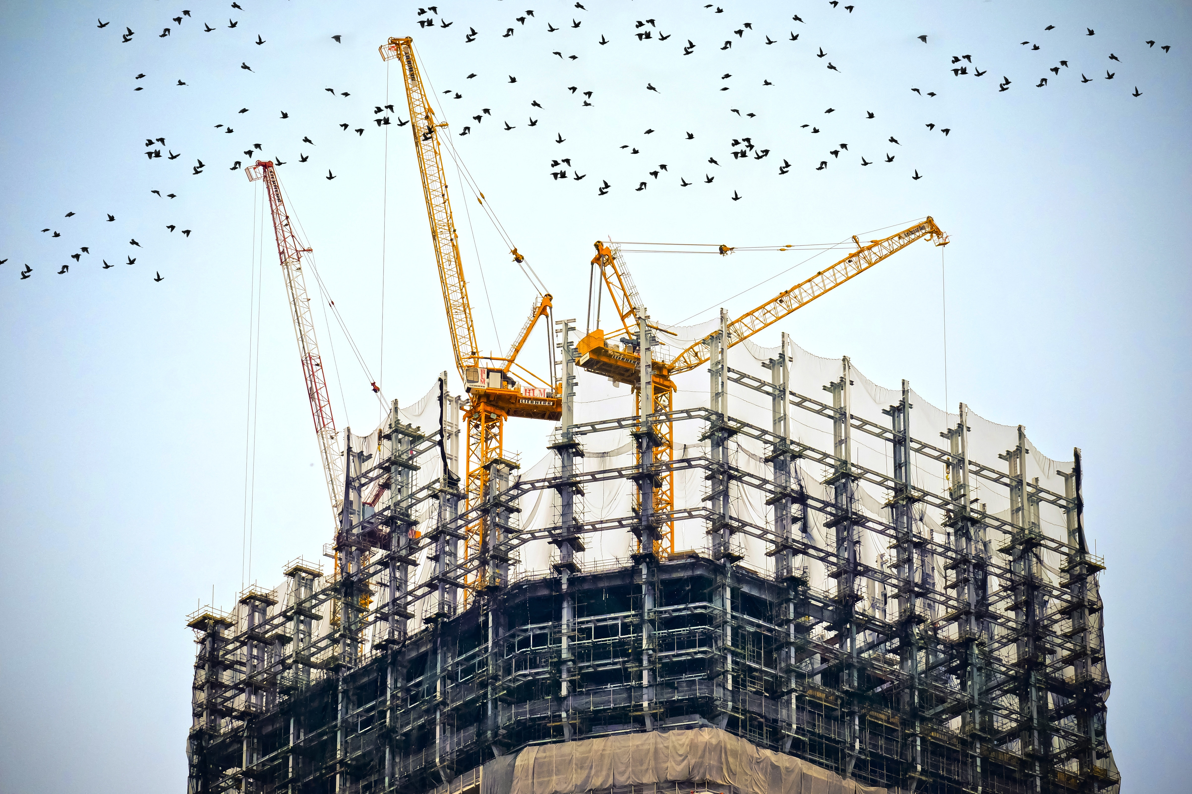 building-skeleton-with-construction-crane.jpg