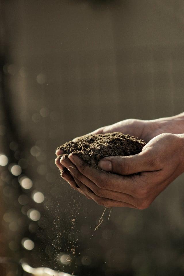 Hands-holding-pile-of-soil.jpg
